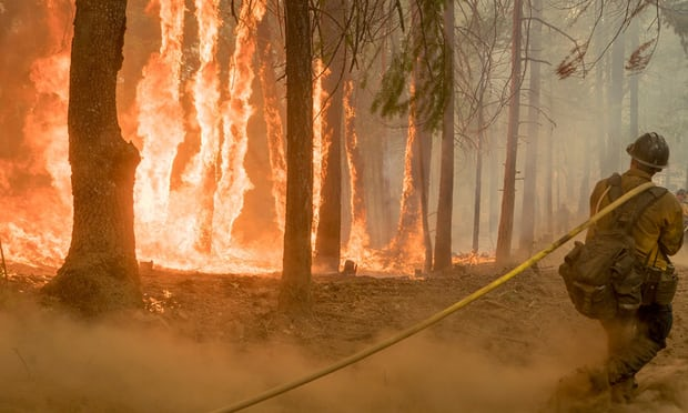 Do not blame wildfires on climate alternate – it is environmentalists' fault, says Zinke