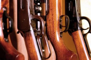 Anger at Dutch plan to invite race and faith of gun licence candidates